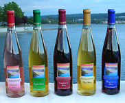 NEW RELEASE APPLE, PEAR and BLACKBERRY WINES